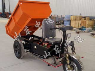 Professional Tricycle with Dumper