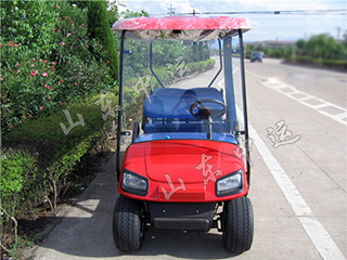 Electric Cart for Sightseeing with Rain Curtain